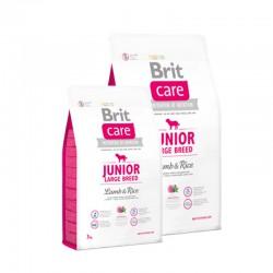 Arena Aglutinante aroma Manzana - Easy Clean