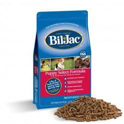 Frontline Plus Perros 20 a 40 kg