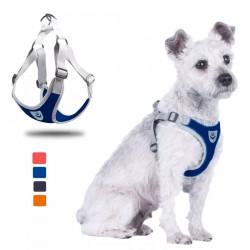 Dentalife Pequeño y Mediano - 10 unidades