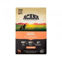 Nutra gold Indoor Kitten